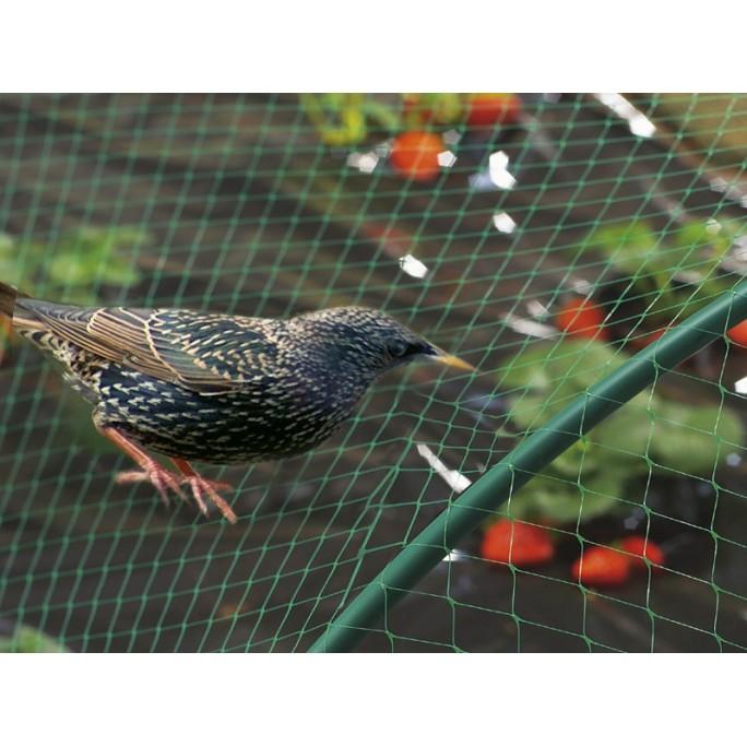 Мрежа срещу птици