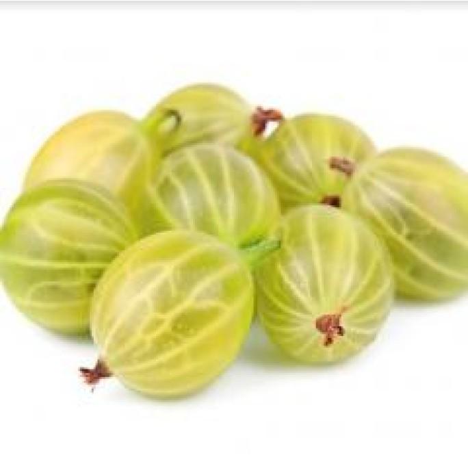 Разсад цариградско грозде (Бодливото грозде)