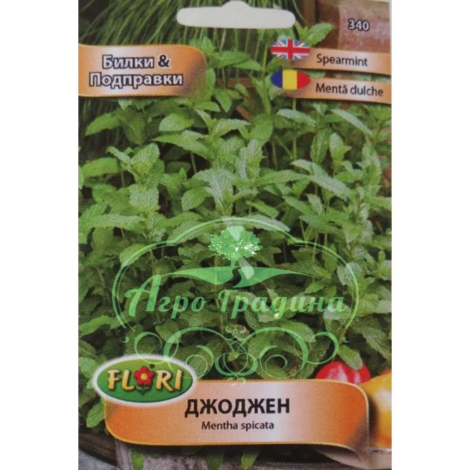 Джоджен / Mentha spicata