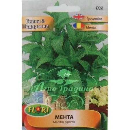 Мента / Mentha piperita