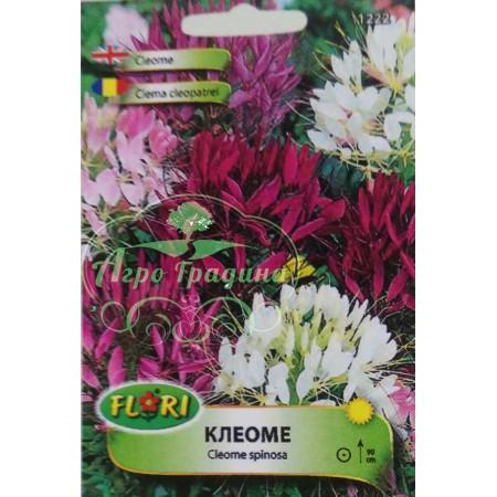 Клеоме микс - Cleome spinosa