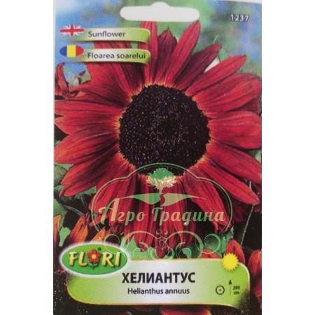 Хелиантус (Слънчоглед) червен