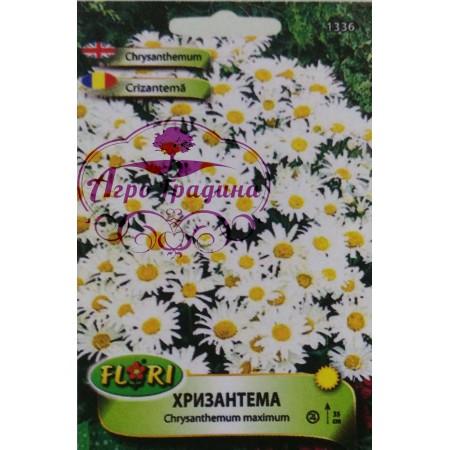 Семена за бяла Хризантема