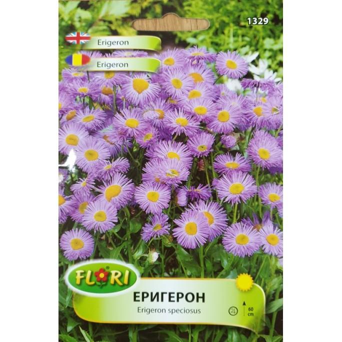 Семена от Еригерон / Erigeron speciosus