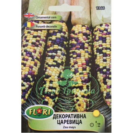Декоративна царевица