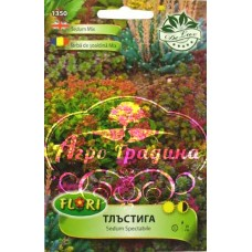 Седум (Тлъстига) микс / Sedum spectabile mix
