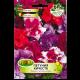 Петуния кичеста каскадна / Petunia x hybrida pendula