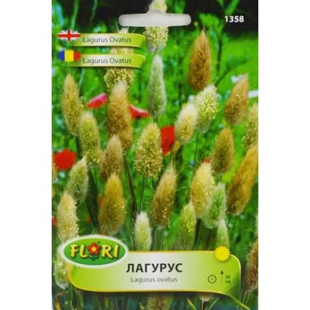 Семена от Лагурус (Заешка трева) - декоративна трева