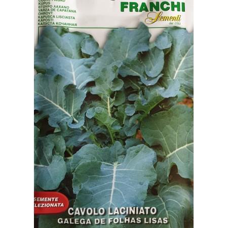 Кейл - португалско листно зеле с градки листа