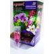 """Капсула Тор за орхидеи Agrecol"""" Strong """" - 30 ml. (еднократна доза)"""